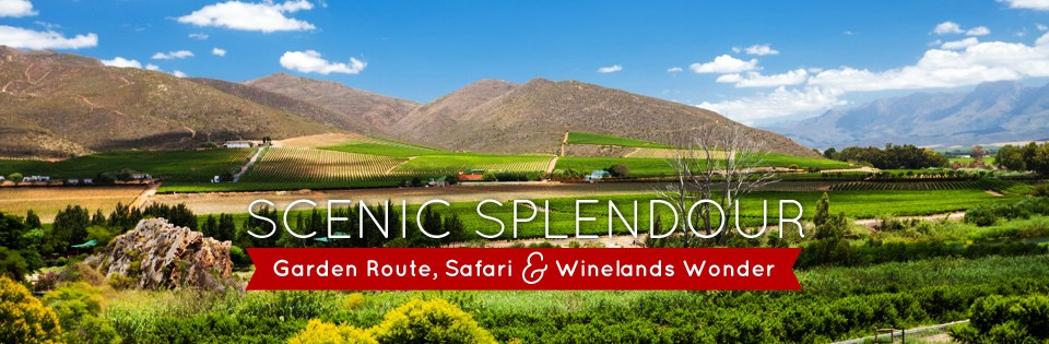 Garden Route, Safari & Winelands Wonder