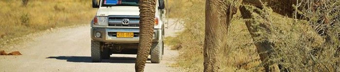 Top 3 Destinations in Namibia