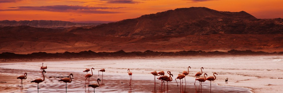 Namibia Northern Odyssey